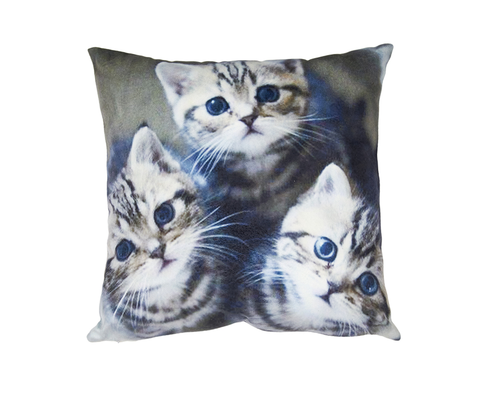 Pet Cushion