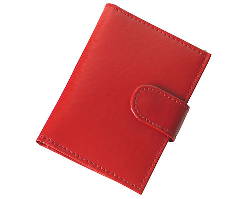 Red Travel Card Holder
