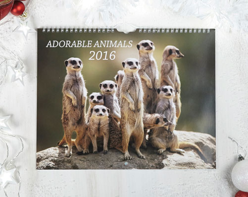 Adorable Animals Calendar - Was £5