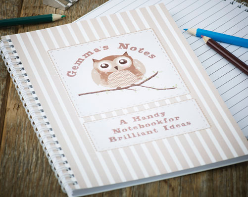 Brown Owl Note Book
