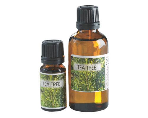 Essential Oils - Tea Tree